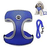 Shinmax Hundegeschirr für Kleine Hunde No Pull Sicherheitsgeschirr Einstellbarer Komfort Reflektierendes Katzengeschirr Weiches, Atmungsaktives Leichtgewicht für Kleine, Mittelgroße Hunde und Katzen