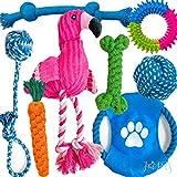 JAI PETS Hundespielzeug für Welpen, Kauspielzeug für Welpen, Spielzeug zum Zahnen – Hundespielzeug zum Kauen, für kleine und mittelgroße Hunde – 8 Stück