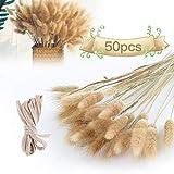 50 Stück Trockenblumen Pampasgras Deko, Pampasgras Getrocknet Groß Natur Strauß Blumen Gräser Blumenstrauß Pampas Deko für Hochzeit Innendekoration Schlafzimmer Wohnzimmer