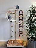 Kletterbaum aus Holz Papageien Freisitz HÄNGEBRÜCKE Papageienspielzeug verschiedene Größen