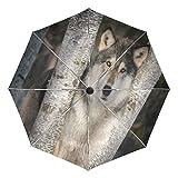 Wamika Grauer Wolf Canis Lupus Sternen-Automatischer Regenschirm Tierbaum Winddicht Wasserdicht UV-Schutz Reise-Regenschirm – 3 Klappen Automatischer Öffnen/Schließknopf für Sonne und Regen Auto