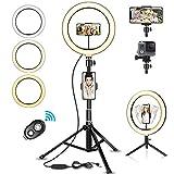 SYOSIN LED Ringlicht Stativ mit Fernbedienung, 10.2' Selfie Ringleuchte Doppel-Handyhalter mit 3 Farbe und 11 Helligkeitsstufen für YouTube TikTok Self-Porträt der Videoaufnahme