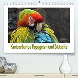 Kunterbunte Papageien und Sittiche (Premium, hochwertiger DIN A2 Wandkalender 2022, Kunstdruck in Hochglanz): Papageien und Sittiche - farbenfrohe Exoten (Monatskalender, 14 Seiten ) (CALVENDO Tiere)