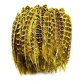 ASDFGH Natürliche Fasanenfeder für Kleidung 4-6'/10-15CMGefärbte weibliche Federn für KunsthandwerkSchmuckzubehör