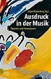 Ausdruck in der Musik: Theorien und Formationen