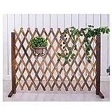 WXQIANG Gartenzaun Bildschirm Leitschiene Dekoration Pflanze Klettergerüst Garten Barrier feuchtigkeitsfest, 3 Größen, Typ 2 (Color : Brown, Size : 115X160CM)