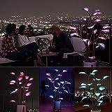 JsJr-K-In Die magische LED Zimmerpflanze Fee Lampe LED Nachtlicht Pflanze Licht Party Dekor Programmierbare LED Licht Farbe APP-Steuerung