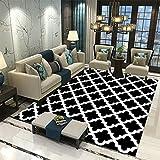 MMHJS Home Luxus Nordic Style Weiche Haut-Freundlich Rechteckiger Großer Teppich Wohnzimmer Teppich Schlafzimmer Nachtteppich 120x160
