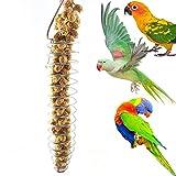 Catkoo Vogelzubehör, tragbar, Edelstahl, spiralförmig, für Vögel, Papageien, Haustiere, Obst, Spielzeug – Silb