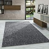 Carpetsale24 Kurzflor Teppich Flachgewebe Schlingenteppich Kettelteppich Meliert Grau, Maße:60 cm x 100 cm