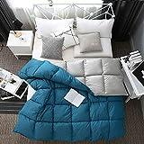 N/Z Wohnausrüstung Daunendecke Einfarbige Baumwollsteppdecke Verdickung 95% Weißer Gänsedaunenkern Wintersteppdecke King Size Blau 220 * 240