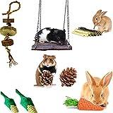Kaninchen Kauspielzeug Kleintierspielzeug amster Spielzeug, Natürliches Kleintiere Apfelholz Pet Snack mit für Papageien, Eichhörnchen Merschweinchen,Chinchilla H