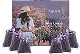 nutrist 10x Lavendelsäckchen - Duftsäckchen Kleiderschrank   Lavendel Duftsäckchen zum Einschlafen   Mottenschutz für Kleiderschrank   Erfrischender Duft für Ihre Wäsche   Lavendel getrocknet