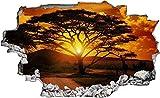 Wandaufkleber 3D Spiegel Ansicht Durchbrechen die Mauer Vinyl Wandsticker Savanne Baum Afrika Entfernbarer DIY Vinyl Wandtattoo für Wohnzimmer, Schlafzimmer,Kinderzimmer 70x110