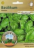 Basilikum Genoveser Saatband für Balkon & Terrasse schnellwachsend würzig gesund Kräuter 43910