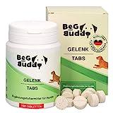 BeG Buddy Gelenktabletten Hund - Gelenkkapseln hochdosiert mit Grünlippmuschel, Teufelskralle, MSM, Glucosamin - für alle Rassen - 100 Tabs