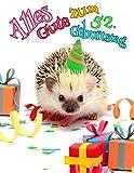Alles Gute zum 52. Geburtstag: Besser als eine Geburtstagskarte! Niedliches Igel-Geburtstagsbuch, das als Tagebuch oder Notizbuch verwendet werden k