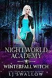 Nightworld Academy: Winterfall Witch (English Edition)