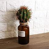 Lairun Plastikpflanze, künstliche Pflanze, DIY-Kunsthandwerk Immergrüner Kunststoff Exquisit für Room Office Coffee Shop Milk Tea Shop