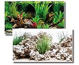 Amtra Deko Fotorückwand Wonder beidseitig Bedruckt 100x60cm 2in1 Rückwandposter Rückwand Folie Aquarien Poster Foto Folien