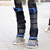 horze Stallgamaschen Pro Front - Schützende Gamaschen - Bandagen - Neopren Material - Stoßabsorbierend - Pferd Müde Beine Unterstützung - Größen Pony Vollblut Warmblut - 2er Set - Herausnehmb