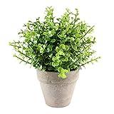 Künstliche Pflanzen, Pflanze Künstliche Mini Kunstpflanzen Echt Pflanzen Künstlich Eukalyptus Rosmarin Kleine mit Topf Home Schreibtisch Küche Badezimmer Garden Deko