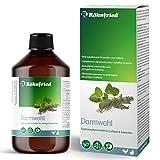 Röhnfried Darmwohl 500 ml | Nahrungsergänzung für Nager, Geflügel & Kleintiere | geförderte Verdauung &