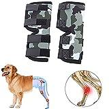 WESEEDOO Hunde Arthrose Bandage Hund Pfotenschutz für Hunde Gemeinsame Unterstützung für Hunde Hundegelenkstütze Hundebeinstütze Schmerzlinderung für Hunde L