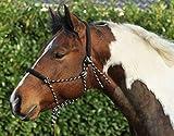 HKM Western Knotenhalfter, rund gepolstert an Nase und Genick, schwarz/beige, Vollb
