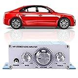 Niiyen HY - 2001 Autoverstärker, Mini Digital Auto Autoverstärker HiFi Audio Musik CD DVD Mp3 FM Player, geringe Verzerrung, für Schaltungsdesign, Sound, transparent, hell(Blau)