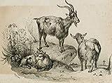 H. W. Fichter Kunsthandel: ADAM; Benard, Ziege mit Zicklein und Ziegenbock, 19. Jh, Lithographie