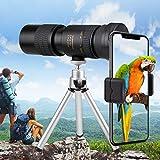 Adhope 4K 10-300X 40mm Monokular Teleskop HD Fernrohr Nachtsicht Wasserdicht Beschlagfrei Stoßfest Telezoom mit Smartphone Halterung & Stativ für Vogelbeobachtung Camping Wildlife Wandern Jag