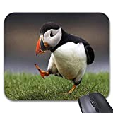Mauspad Ein Papageientaucher-Vogel Geht Sehr Besorgt Benutzerdefiniertes Gummi-Rechteck Längliches, Rutschfestes, Bedrucktes Mauspad Personalisiertes Spiel Computermode Mousepad 25