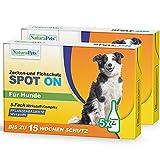 NaturaPets® Zecken- & Flohschutz (Spot-On Fluid) Lösung als Ungezieferschutz, Zeckentropfen für Hunde im Doppel-Pack mit Pflanzenbasierte Wirkstoffe (10 x 3ml)