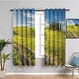 JNWVU Blickdicht Vorhang für Schlafzimmer - Landschaft grüne Pflanzen Bäume grün - 3D Druckmuster Öse Thermisch isoliert - 200 x 160 cm - 90% Blickdicht Vorhang für Kinder Jungen Mädchen Sp