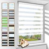Zarnan Klemmfix Doppelrollo ohne Bohren 80x200cm(BxH) Weiß,Duo Rollo Blickdicht Zebrarollo für Fenster&Tür Wohnzimmer Küche Büro