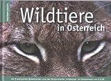 Wildtiere in Österreich: Mit 8 exklusiven Briefmarken und der Serienmarke Wildkatzen (Marken.Bücher / Bücher mit frankaturgültigen österreichischen Briefmarken)