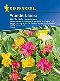 Mirabilis jalapa Wunderblume Marbles-Mix