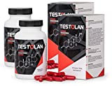 ✅TESTOLAN - Ultimate Testosterone-Booster, High Quality Food-Supplement (240 Kapseln)