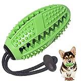Zahnbürsten-Stick, Ball Leckerli-Spender für Hunde Welpen-Zahnpflege, Bürsten und Kauspielzeug, ungiftiges Naturkautschuk für Kleine mittlere Hunde (Grün)