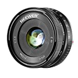Neewer 32mm F / 1.6 Manueller Fokus feste Objektiv Scharfe Hohe Blende, Kompatibel mit Sony A7III A9 NEX 3 3N 5 NEX 5T NEX 5R NEX 6 7 A6400 A5000 A5100 A6000 A6100 A6300 A6500