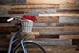 Mega Holz 3D Altholz Wandverkleidung 0,8 m² - Vintage Wandholz aus verwittertem und recyceltem Altholz
