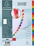 Exacompta 1111E Register (Teilung A-Z / 20 Taben, aus Karton, DIN A4, 160g) 1 Stück weiß