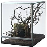 Glas Terrarium Glasterrarium 25x30x30 25 30 Falltü