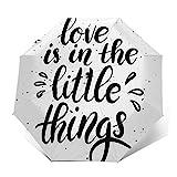 Regenschirm Taschenschirm Kompakter Falt-Regenschirm, Winddichter, Auf-Zu-Automatik, Verstärktes Dach, Ergonomischer Griff, Schirm-Tasche, Zitat Liebe ist klein