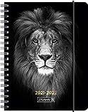 """BRUNNEN 1071855062 Schülerkalender 2021/2022 (18 Monate) """"Lion"""" 2 Seiten = 1 Woche, Blattgröße 12 x 16 cm, A6, PP-Einb"""