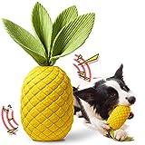 Rmolitty Hundespielzeug, Unzerstörbares Kauspielzeug für Hunde, Langlebiger Gummi Quietschspielzeug für Große Mittlere H