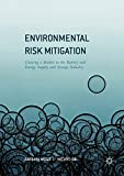 Environmental Risk Mitigation: Coaxing a Market in the Battery and Energy Supply and Storage Industry (English Edition)