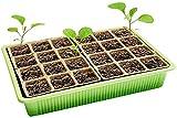 Sämlingsfach, Sämlingsablage, Wachstumstablett, Pflanze Keimungskasten, 24-Gitter-Gartenkünstlerkasten, Mini-Gartenkasten Mit Transparentem Abdeckungsfach, Verwendet Für Samenpflanzungsanlage Sämling