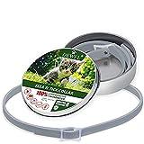 DEWEL 34.5cm Zecken Halsband für Kleine Hunde und Katzen,8 Monate Kontrolle Schutz und Verstellbar Größe Zeckenhalsband